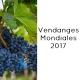 Rapport mondial sur les Vendanges 2017